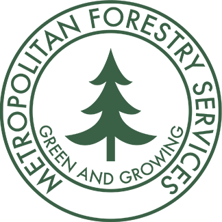 Home Link - Metro Forestry Services Logo
