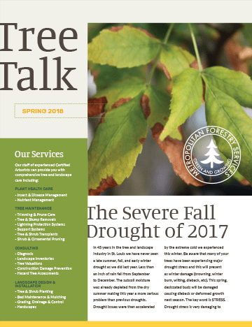 Thumbnail of the Spring 2018 Newsletter Issue