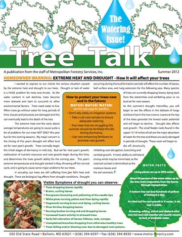 Thumbnail of the Summer 2012 Newsletter Issue